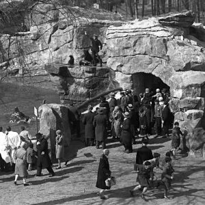 how have zoos changed over time