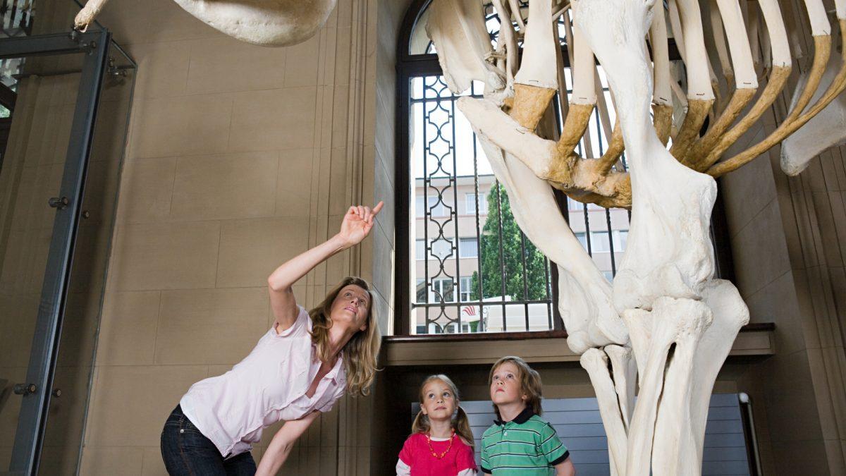 explain-kids-at-museum