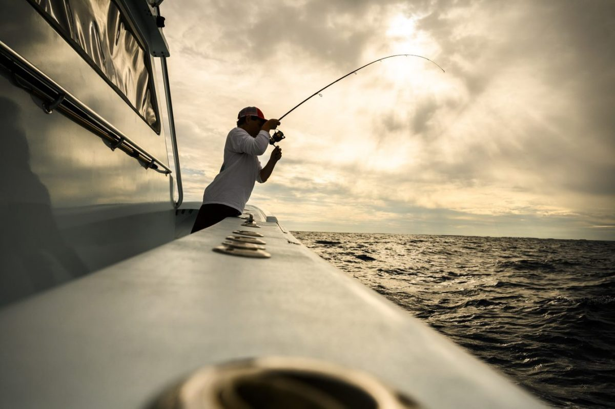 Benefits of a Good Fish Finder